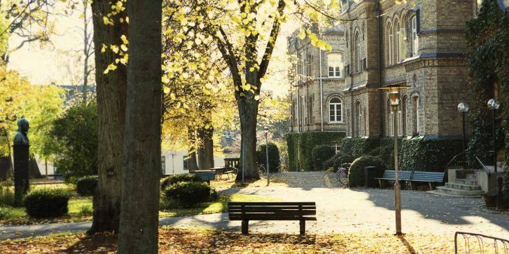Erasmus+ studijos iš pirmų lūpų: ko tikėtis?