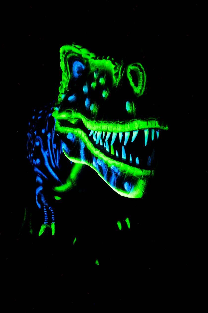 Švytinčių dinozaurų magija Radailiuose.
