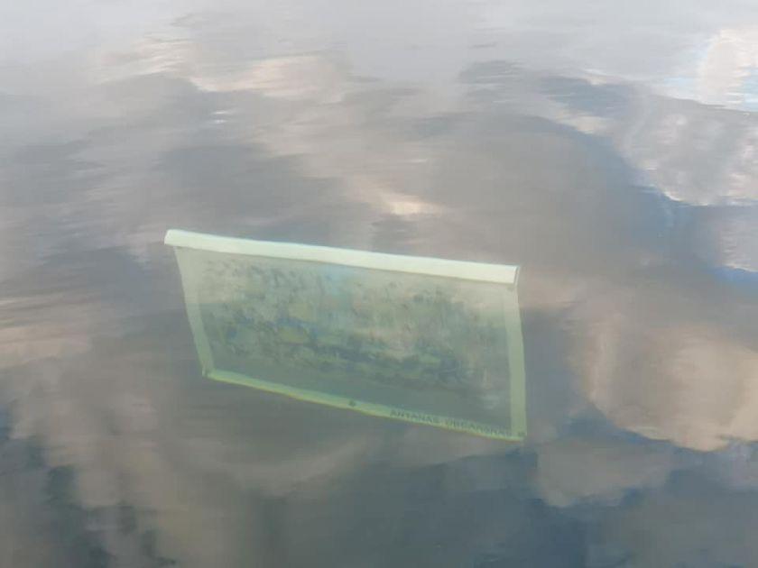 Alaušo ežere – išskirtinė paroda